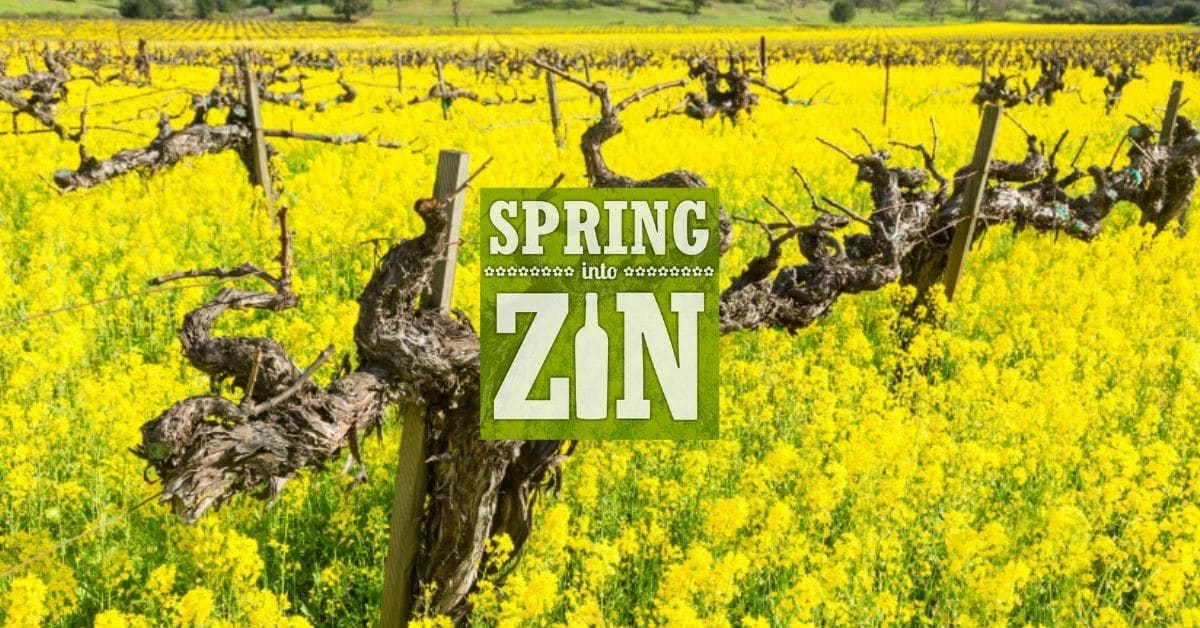 spring into zin 2021 event